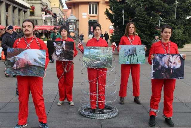 Aktivisti sa žilet žicom