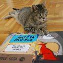 Poziv: Svi u subotu na Marš za životinje!