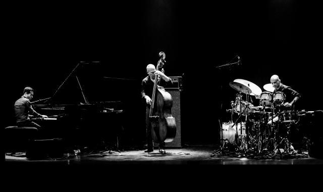 trio Avishai Cohen